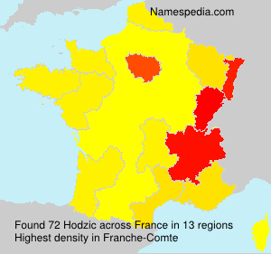 Surname Hodzic in France