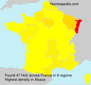 Surname Hoh in France