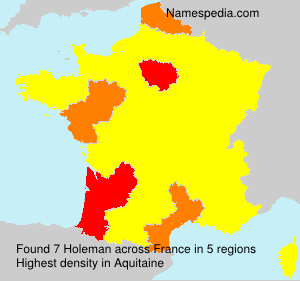 Surname Holeman in France
