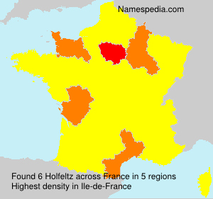 Surname Holfeltz in France