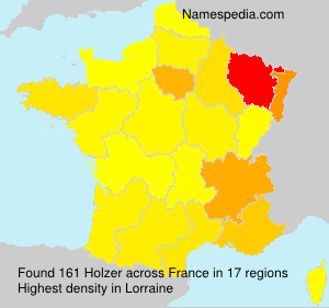 Surname Holzer in France