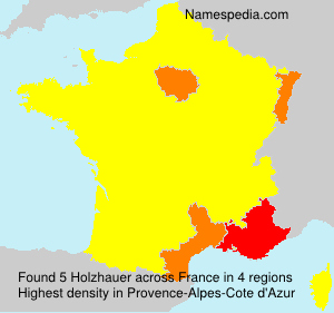Surname Holzhauer in France