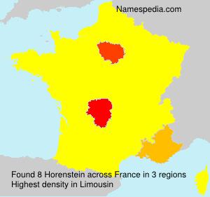 Familiennamen Horenstein - France