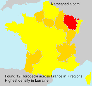 Surname Horodecki in France