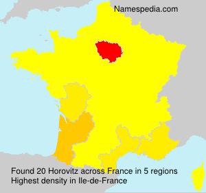 Familiennamen Horovitz - France