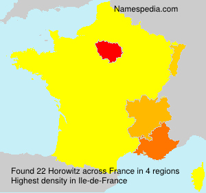 Surname Horowitz in France