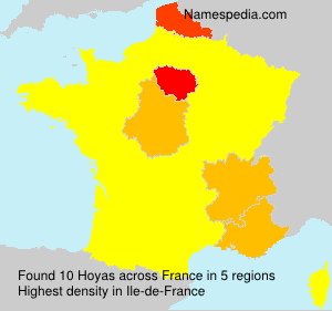 Surname Hoyas in France