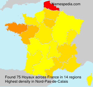 Surname Hoyaux in France