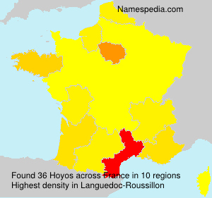 Surname Hoyos in France