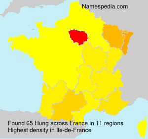 Surname Hung in France
