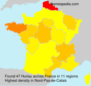 Surname Huriau in France