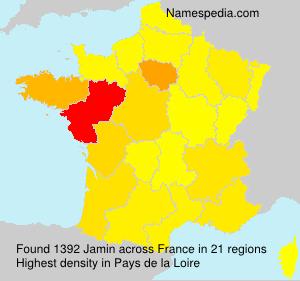 Surname Jamin in France