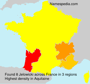 Surname Jelowicki in France