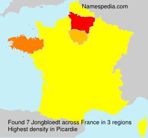 Surname Jongbloedt in France