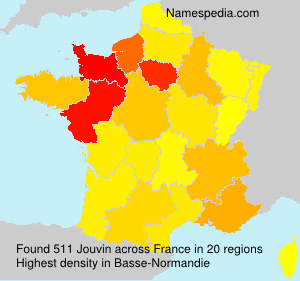 Surname Jouvin in France