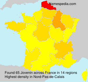 Surname Jovenin in France