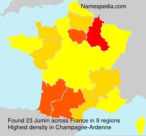 Surname Jumin in France