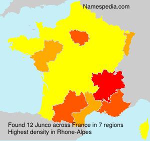Surname Junco in France
