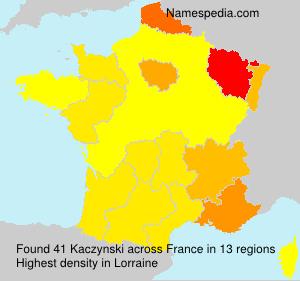 Kaczynski - France