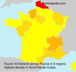 Surname Kaniecki in France