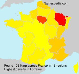 Surname Karp in France
