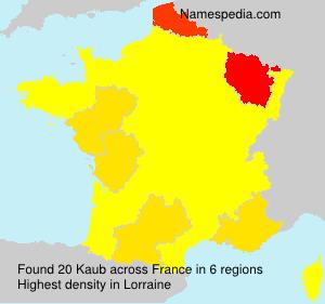 Familiennamen Kaub - France