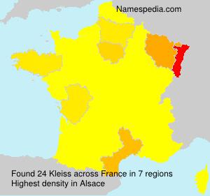 Familiennamen Kleiss - France