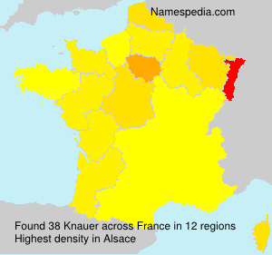 Surname Knauer in France