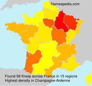 Surname Kneip in France