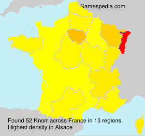 Surname Knorr in France