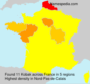 Surname Kobak in France