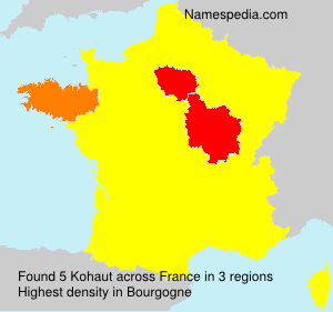 Surname Kohaut in France