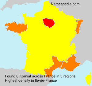 Surname Korniat in France