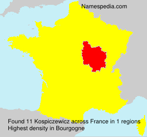 Surname Kospiczewicz in France