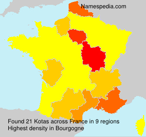 Surname Kotas in France