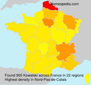 Surname Kowalski in France