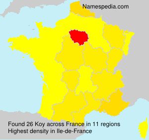 Surname Koy in France