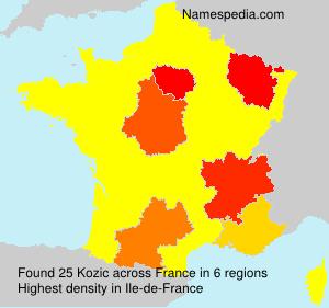 Surname Kozic in France