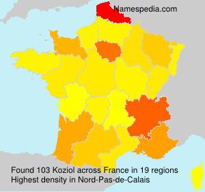 Koziol - France