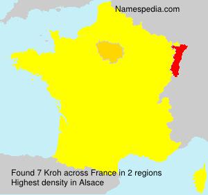 Familiennamen Kroh - France