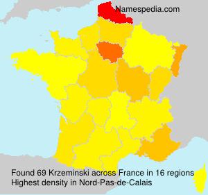 Familiennamen Krzeminski - France