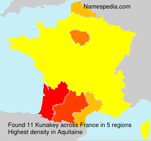 Surname Kunakey in France