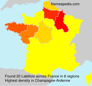 Surname Labillois in France