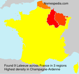 Surname Laleeuw in France