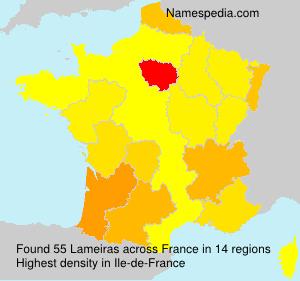 Surname Lameiras in France