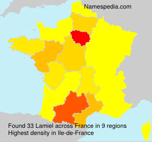 Surname Lamiel in France