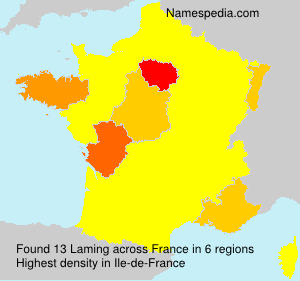 Surname Laming in France