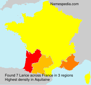 Familiennamen Larice - France