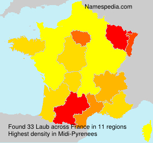 Surname Laub in France