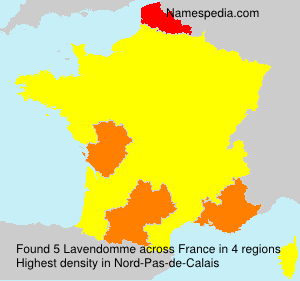 Surname Lavendomme in France